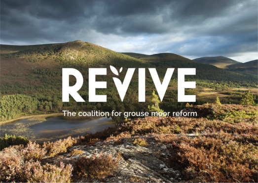 Revive: The coalition for grouse moor reform