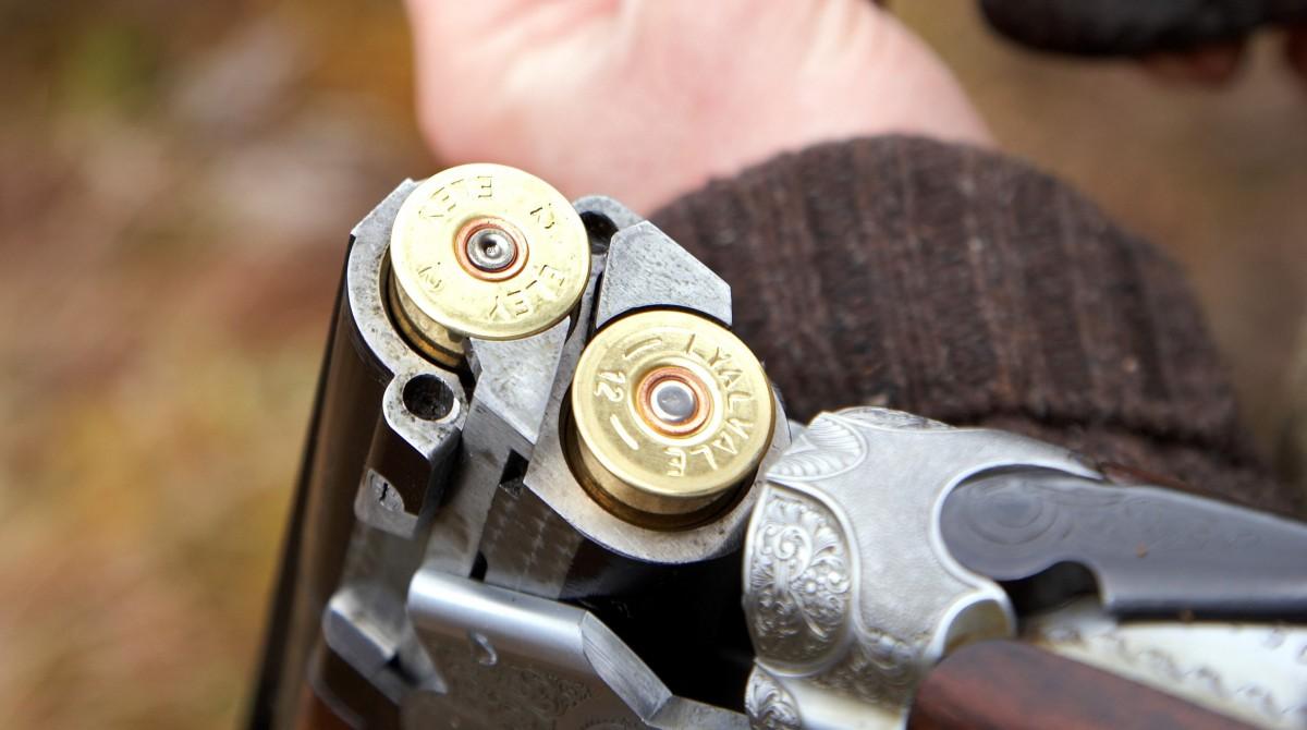 Shot gun image